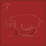 porco-rosso-copia