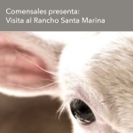 Rancho Santa Marina